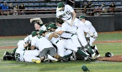Celebration says it all … Hawks are headed to the final four