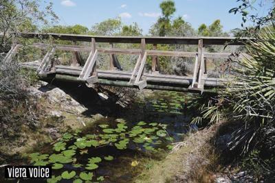 Viera Parks & Sanctuaries - Cuickshank Sanctuary