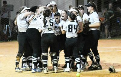 Waggoner shuts out Melbourne as Hawks win to reach regional final