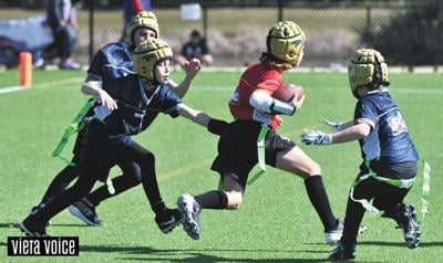 Spring flag football draws nearly 400 players