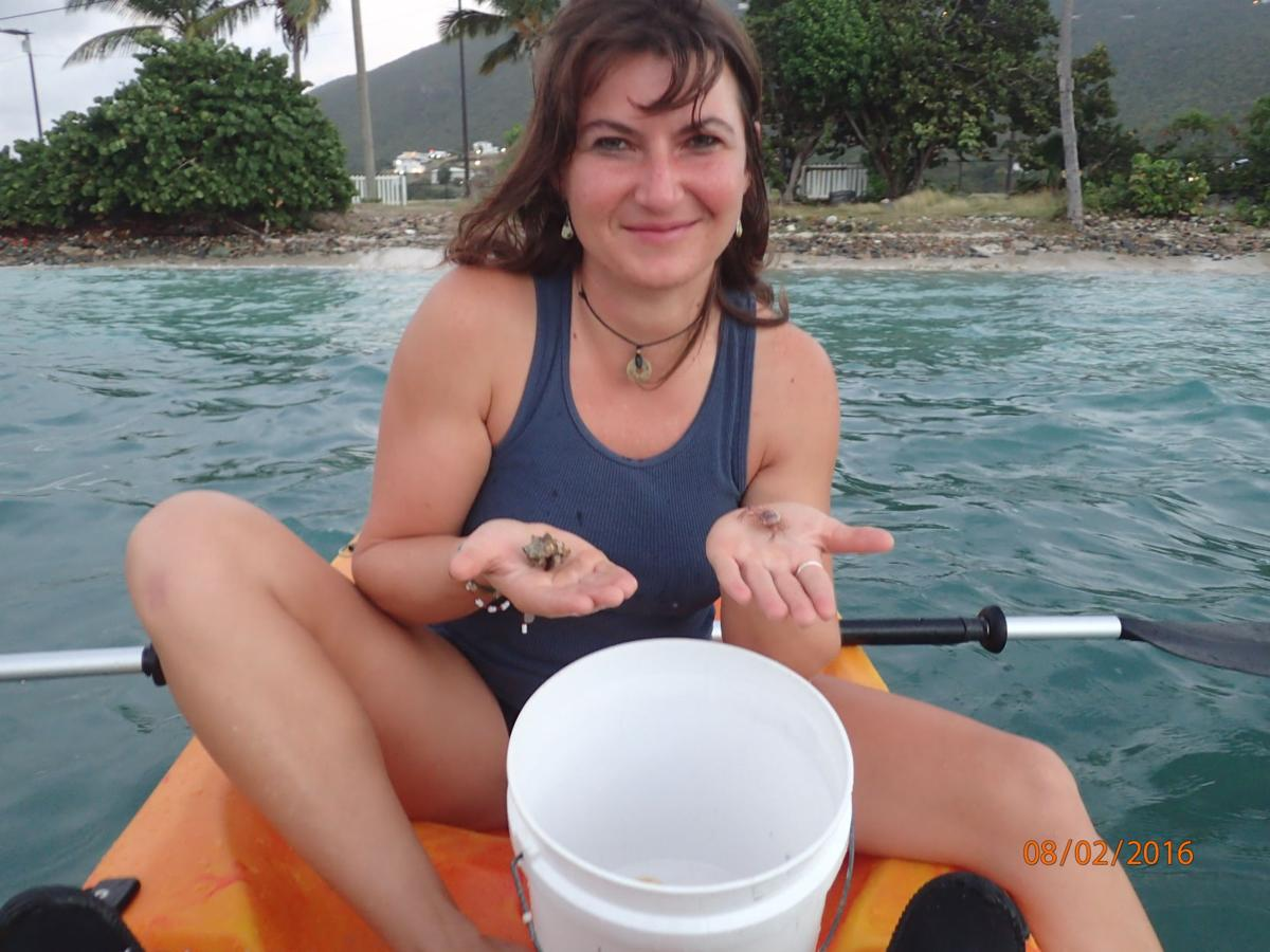 Major journal publishes work of UVI marine studies students | Island