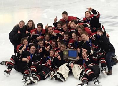 Alexandria Cardinals: 2018 Section 6A Boys' Hockey Champs!