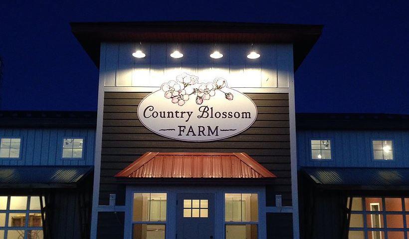 Country Blossom Farm