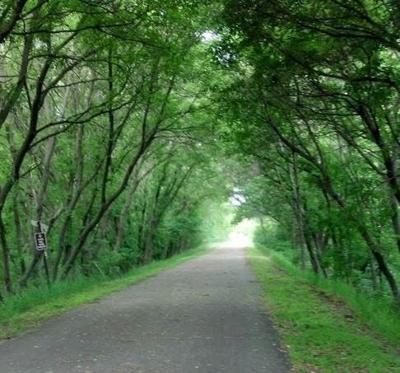 Bike Trail Canopy