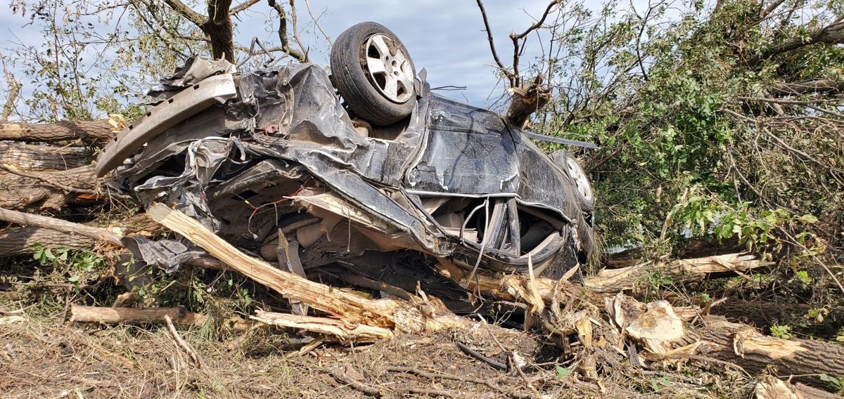 Klimek's vehicle among trees