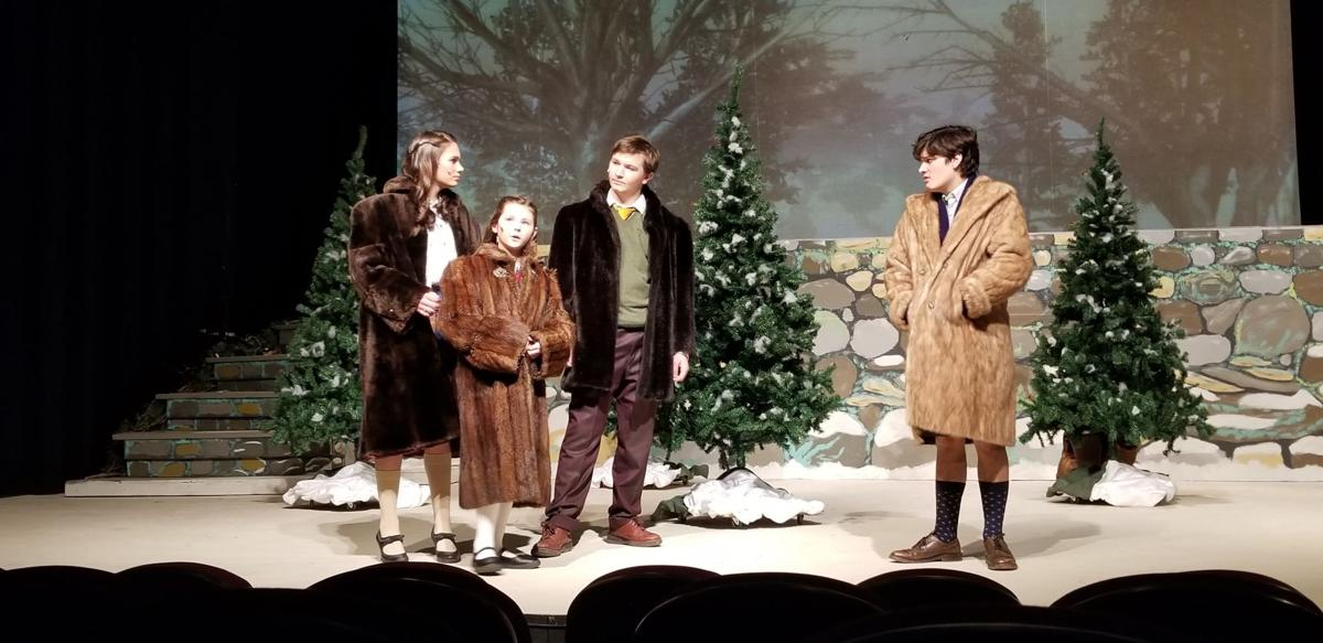 The Lion, The Witch and the Wardrobe at the Andria Theatre