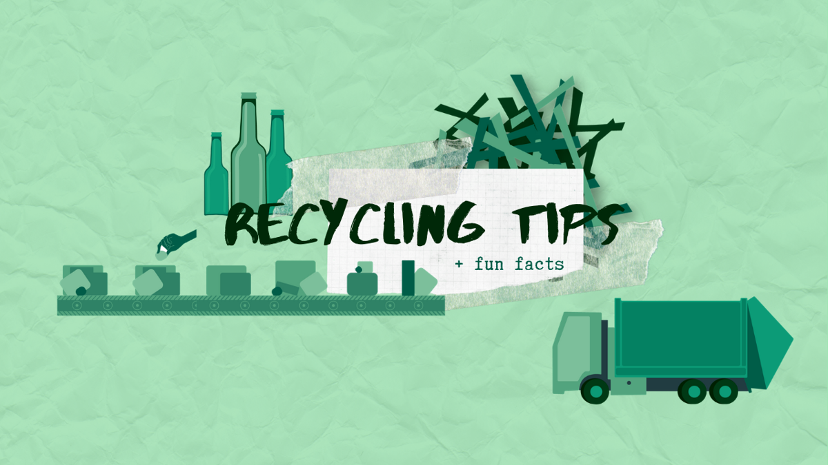 recycling tips and fun facts