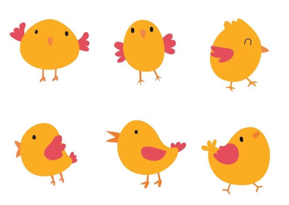 chicken featured image