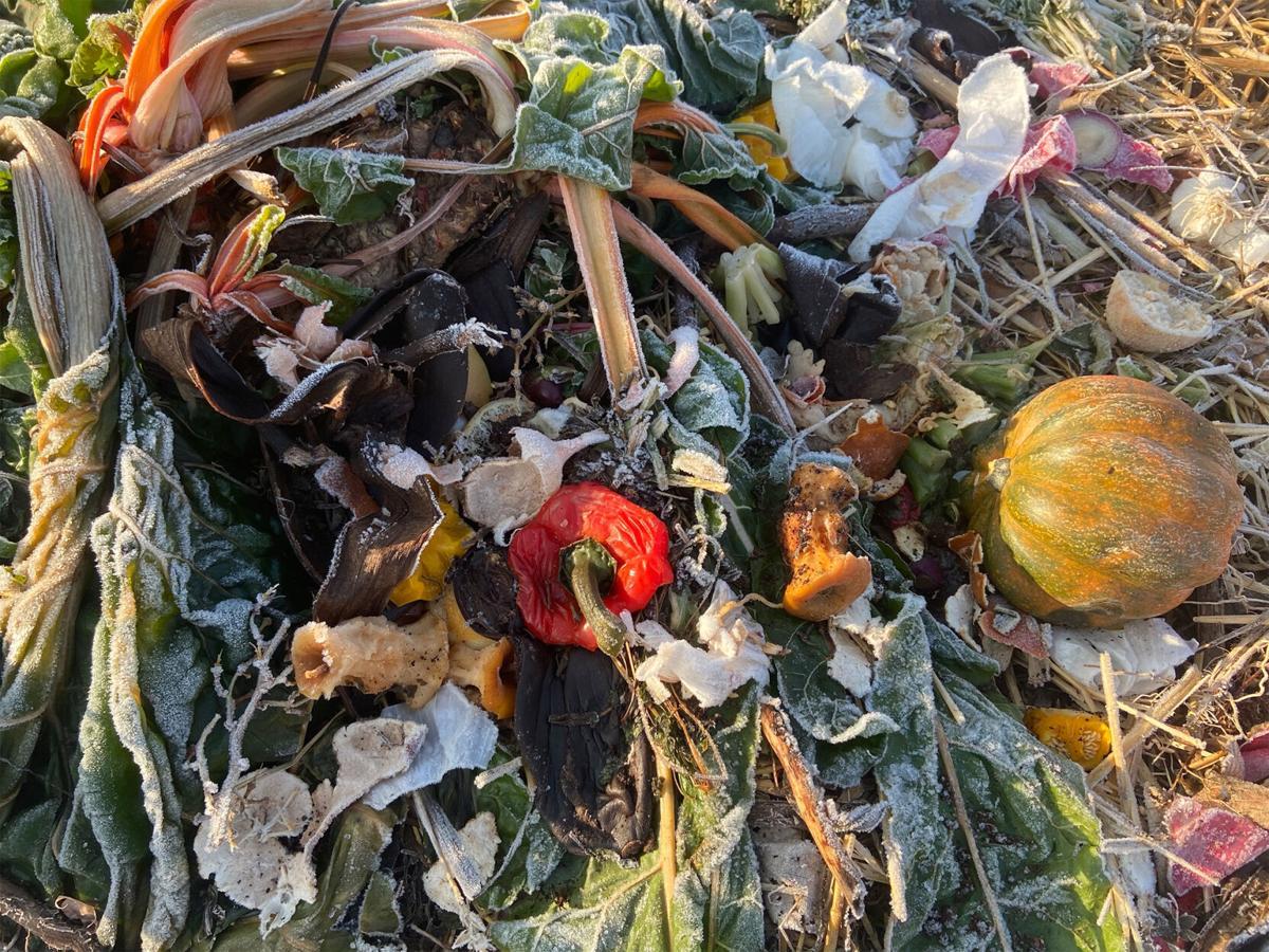Compost-Blox1.jpg