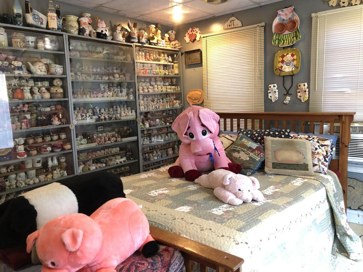 Airbnb pig museum & farm