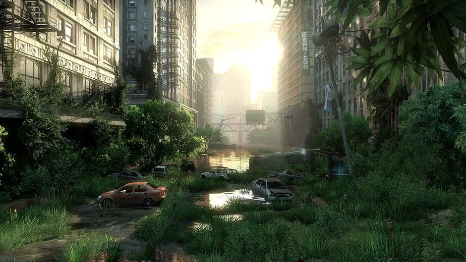 The Last of Us game image