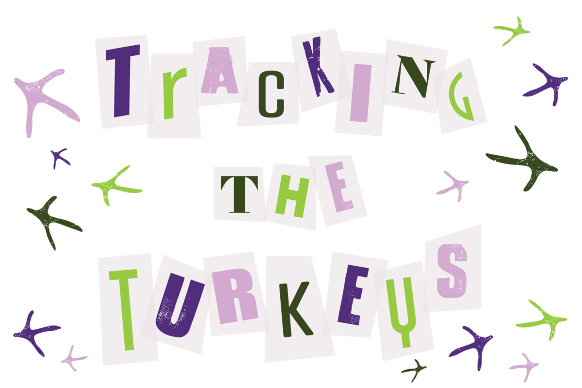 turkey feature (feature image)