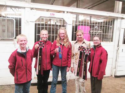 4-H members do well at state horse show