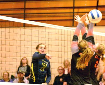 Eagles volleyball to host state match