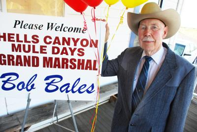 Bales is mule days grand marshal