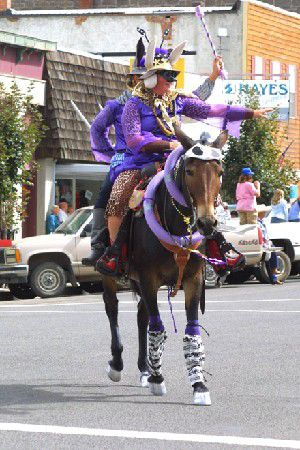 2004 Mule Days attracts enthusiastic competitors