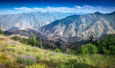 Hells Canyon landscape