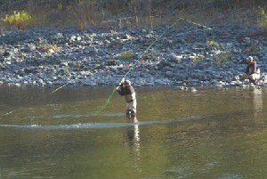 Wallowa County Outdoors: Steelheaders and elk hunters having slow fall