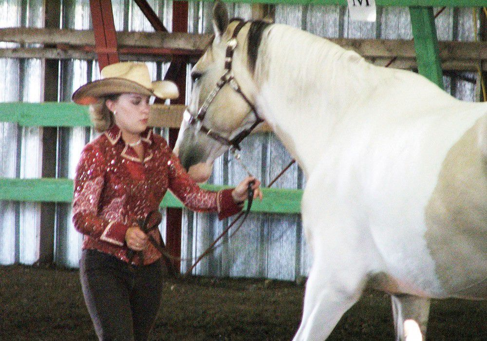 4-Hers earn honors at county fair's horse show