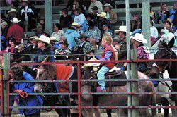 Hells Canyon Mule Days history