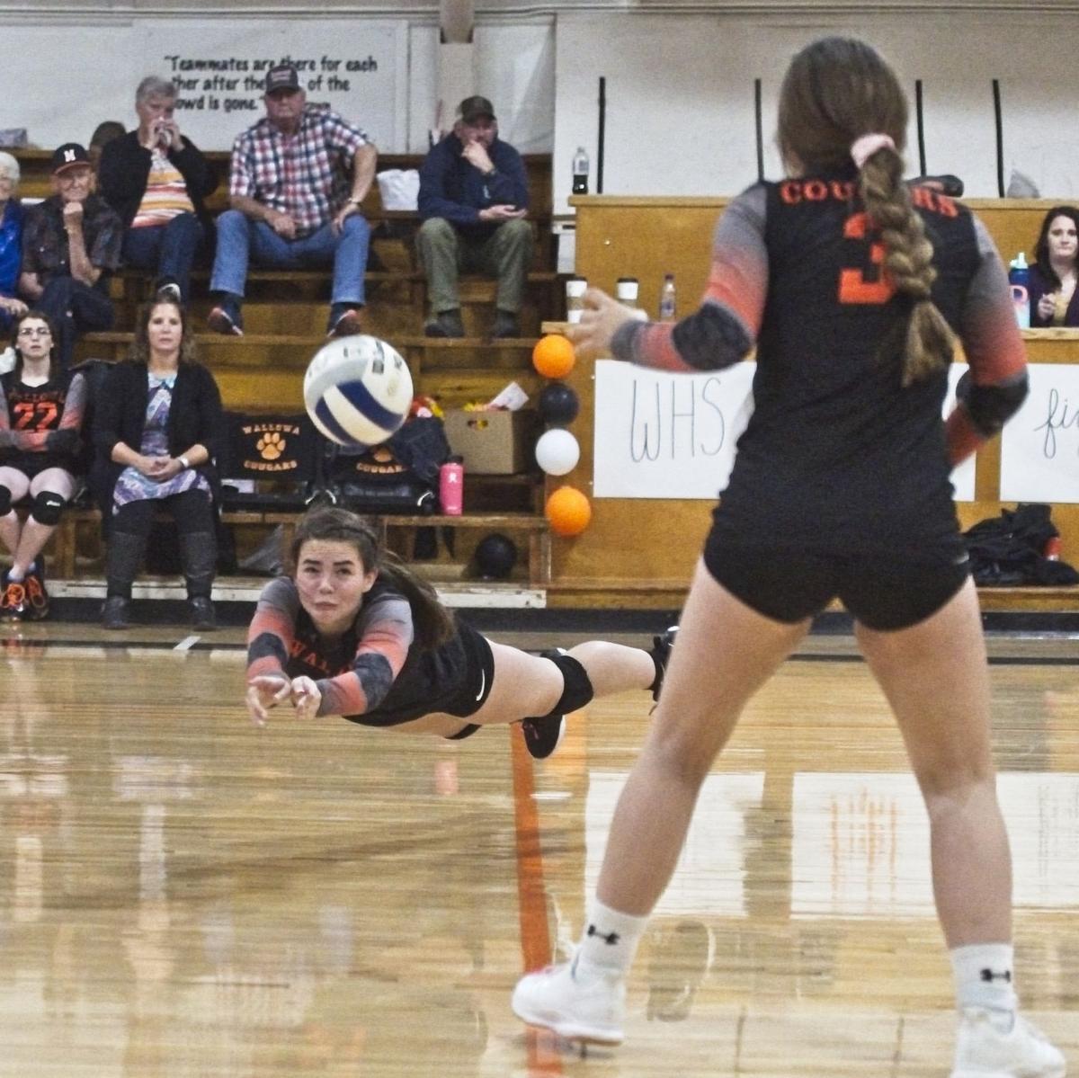wallowaCrane  Volleyball 7 across the net.jpg