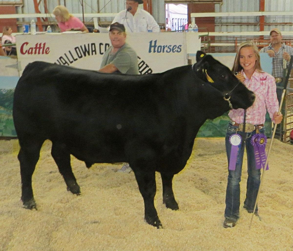 Fair's livestock auction another record-setter