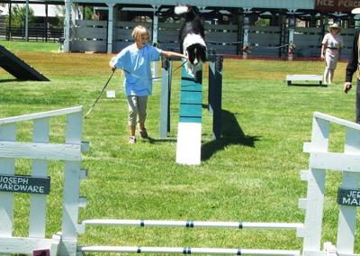 Dogs, kids showoff  at 4- H show