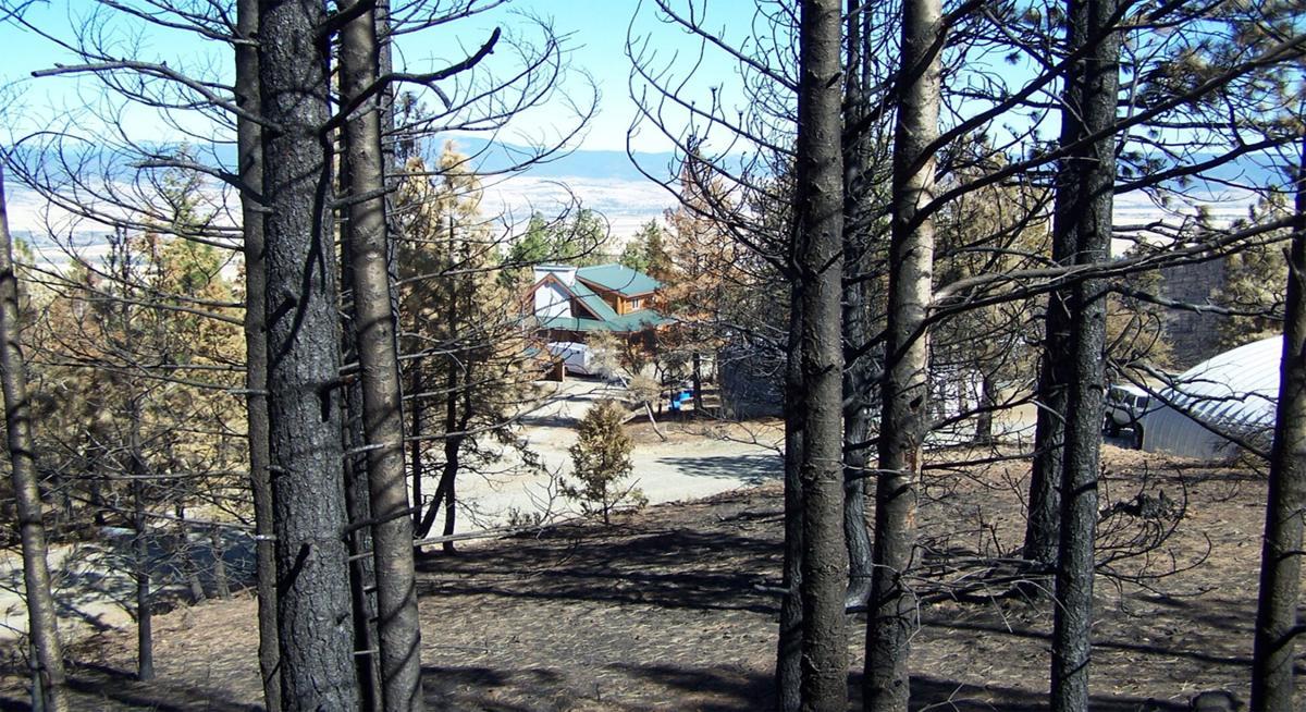 Pine Creek Firewise survivor