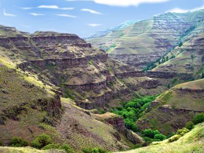 Precious Lands landscape