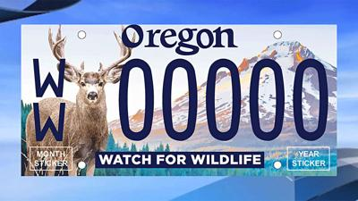 New watch for wildlife license plate