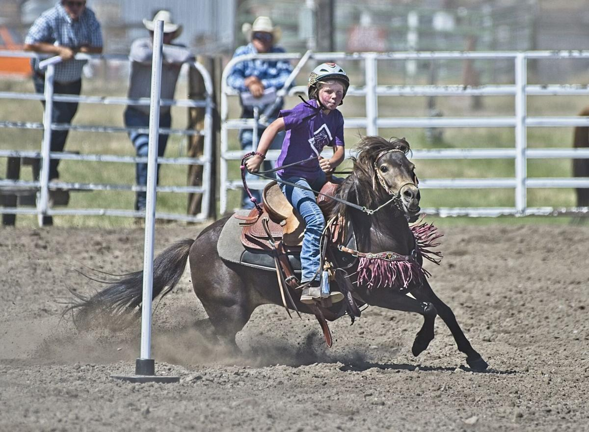 AD 0805 Junior Rodeo 29 tiny horsefigure8.jpg