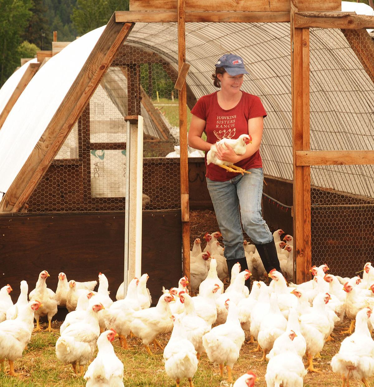 Hawkins sisters fine with fowl