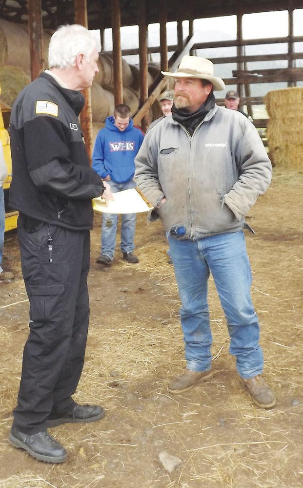Nash's $10K bid wins forfeited cows