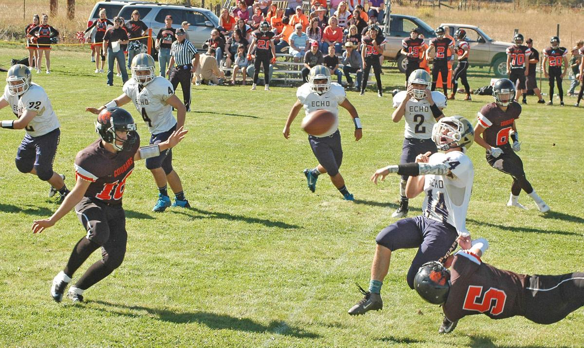 Cougars win home opener, 66-22