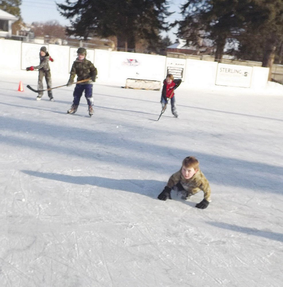 Ice rink in hunt for upgrade funds