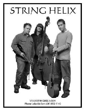 Classical, acoustic guitar-mandolin