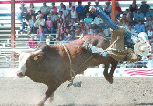 Dust settles after successful Chief Joseph Days