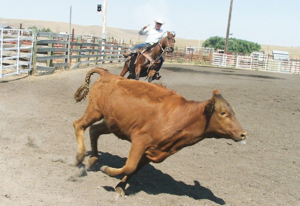 Working hands show off skills at ranch rodeo