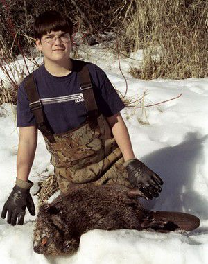 Local trappers make supplemental income off of pelts