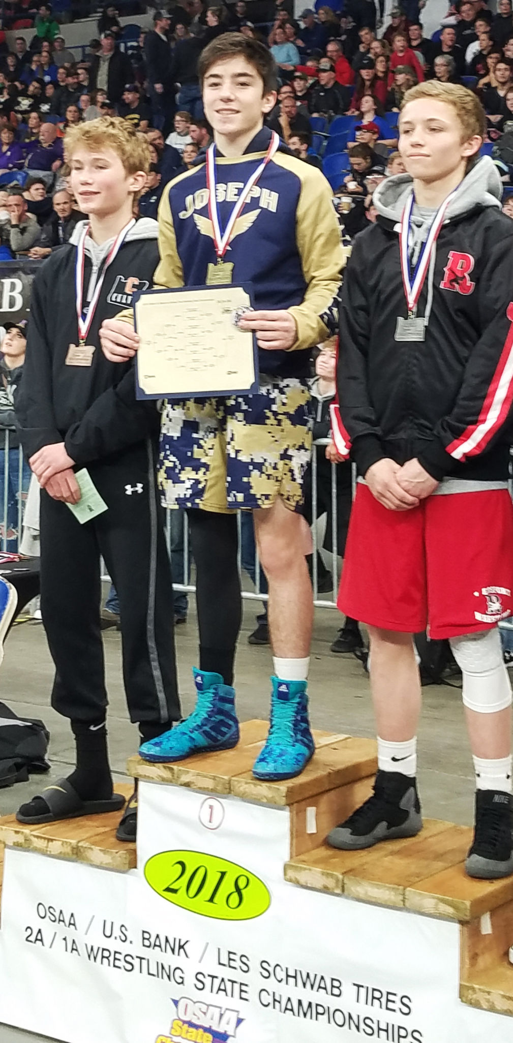 Three county wrestlers bring back medals from state championships