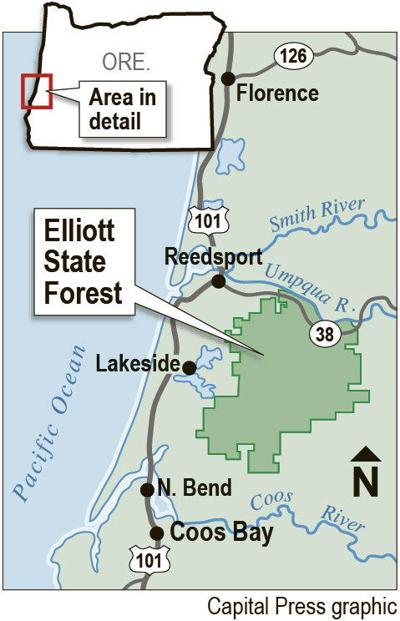 Elliott forest purchase plan meets initial criteria