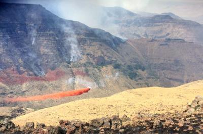 Fire season ends on ODF land