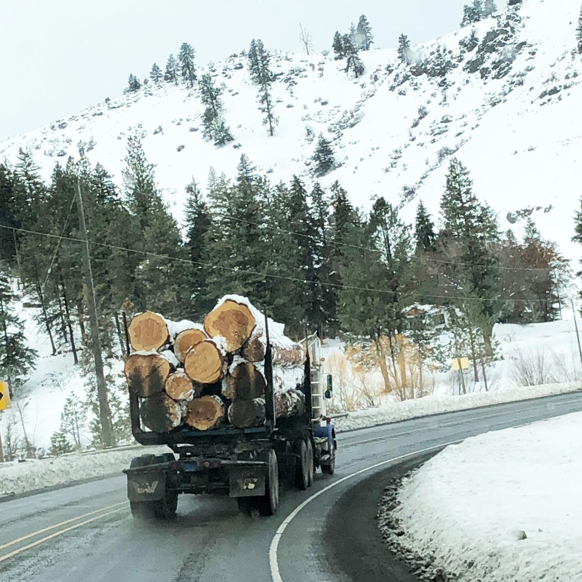 Winter log truck