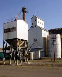 WCGG leaves grain business, so PGG steps in