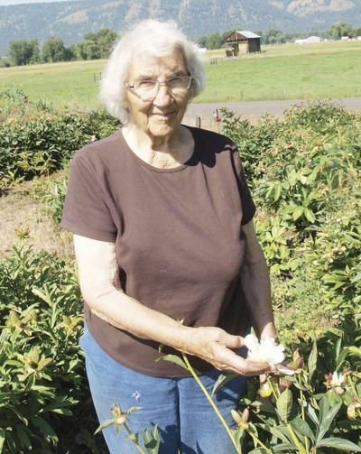 A love with roots: Peonies bring joy to 91-year-old woman