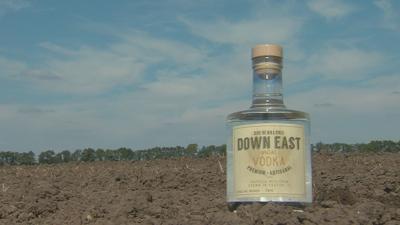 paxton down east.jpg