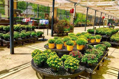 garden center.jpg