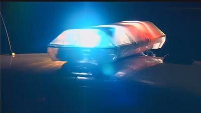 Charleston police investigating criminal sexual assault