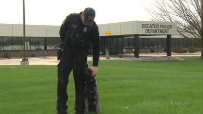 Meet Mick, DPD's newest K9 Officer