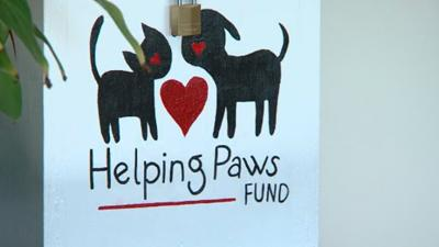 Courage Connection teaming up with Loving Paws
